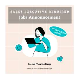 Required Female Sales Executive For Real Estate Company
