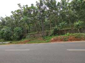3.10 acre highway front land at vengola,near perumbavoor,pattimattom