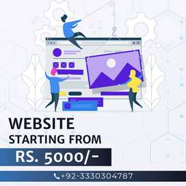 Website development Package