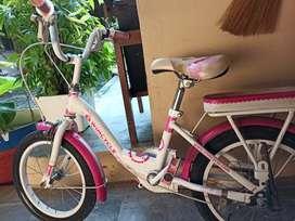 Sepeda Anak (Bekas) Merk Wim Cycle