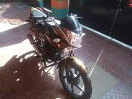 Honda shine SP