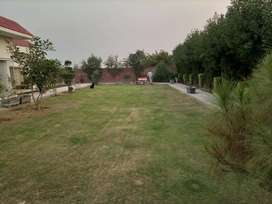 Feroze pure road land for sale for society sua asal
