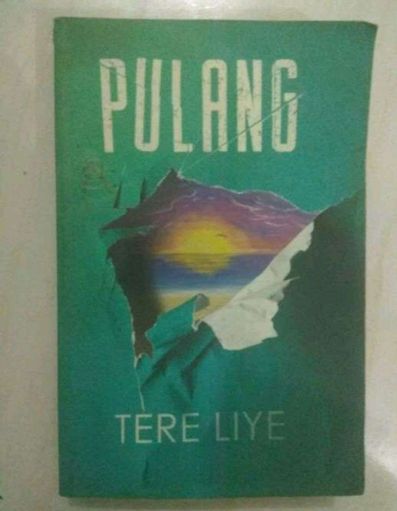 buku novel pulang tere liye 0