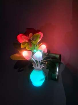 Beautiful Mashroom Night Light with night Sensor