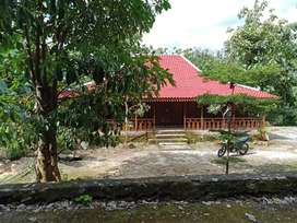 Kode : TP 1497 #Tanah Pekarangan + Bangunan Rumah Limasan di Gunung Ki