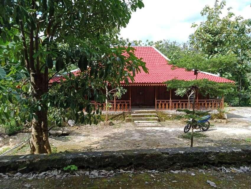 Kode : TP 1497 #Tanah Pekarangan + Bangunan Rumah Limasan di Gunung Ki 0