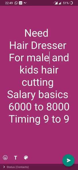 Hair dresser and stylist