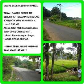 Dijual Cepat BU Tanah Sawah Dipinggir Jalan Dengan View yang Indah 016