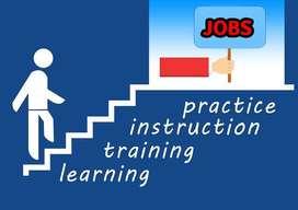 SEO Search Engine Optimizer (SEO) Job in Ujjain