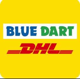 Delivery boy in blue dart