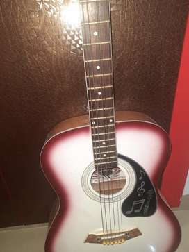 challenger accoustic guitar