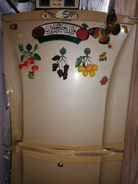 PEL mediam Size fridge 10/8 condition