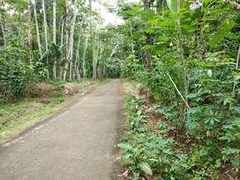 Tanah Murah 140 m2 di Pageraji Barat Purwokerto