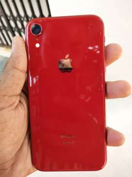 IPhone XR ( Red)