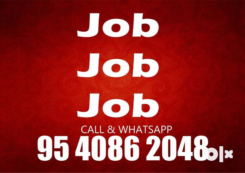 good data entry job home based only typing required 0