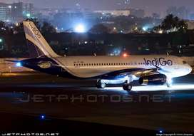 URGENT REQUIREMENT IN INDIGO AIRLINE COMPANY FOR FRESH/EXPERIENCE ALL.
