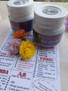 Yosic,herbal asam urat dan gringginen
