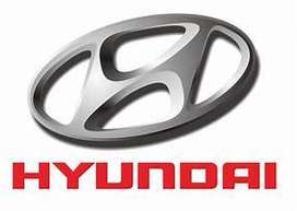 ^^ NEED FOR SALES EXECUTIVE / BACK OFFICE IN HYUNDAI Pvt,Ltd