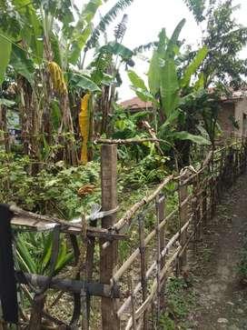 Dijual tanah ukuran 10x15 meter, lokasi tembung pasar 10 bandar klippa