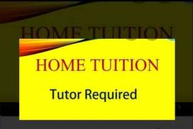 Tutor required