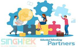 Working Partner for IT Company