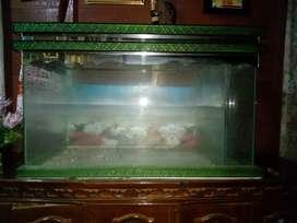 dijual Aquarium bekas
