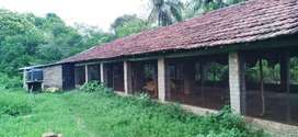 High income Poultry Farm on Rent at Howrah Fatikgachi