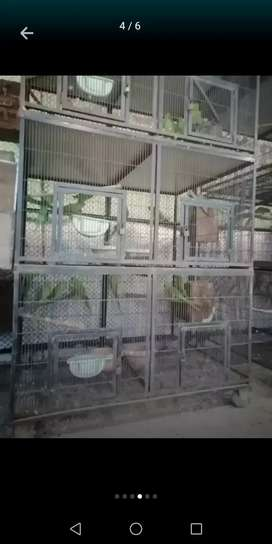 Cage 6 portion