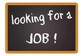 100% home based jobs
