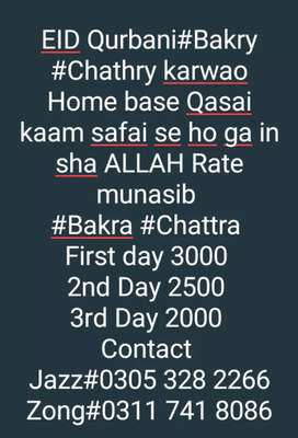 Qasai Home available at low price