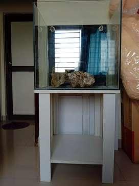 Aquarium fish Tank with Sump