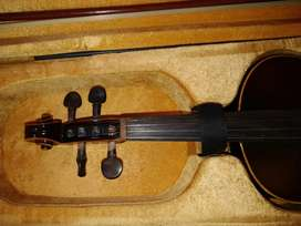 One year old Violin