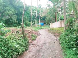 15 cents housing plot for sale in Pulinelly, Kottayi, Palakkad