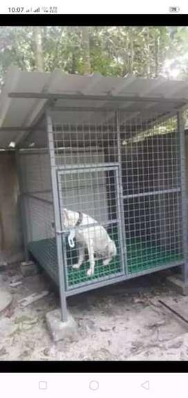 Dog cage big  new  mattirieal