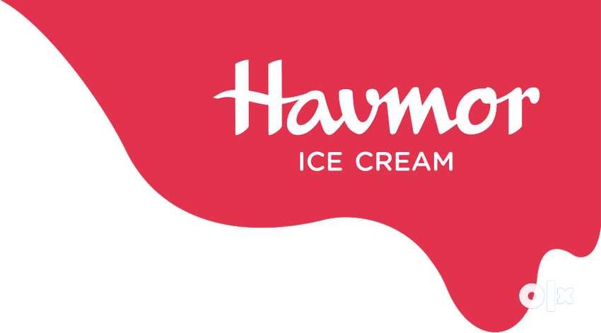 HAVMOR ICE CREAM में आवश्यकता है डिलीवरी के लिए लड़को की 0