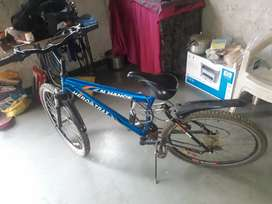 Gear bicycle