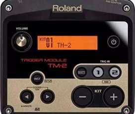 TM2 ROLAND