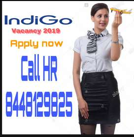 Airport  Airlines Hiring for staff on roll vacancy for full time job