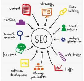 Need a SEO Expert for my website.