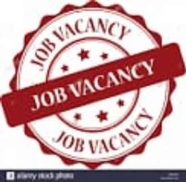 Job Requirement  fresher and experience Candidates