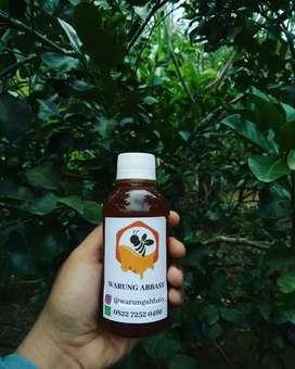 Madu Hutan Sumatra