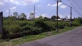 Tanah Luas Murah cocok Kafe/Villa view Sawah Jln Magelang km 5 dkt UGM