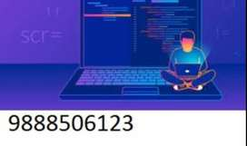 need designer and developer for it company and some institute also nee