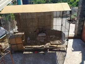 Cage for sale ready made