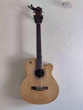 Acoustic Guitar (6 string, Hertz)