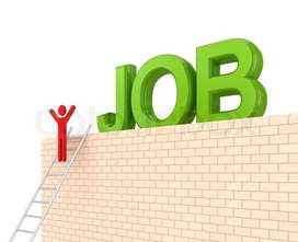Direct hiring for fresher & experienced candidates in Milk India L.t.d