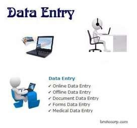 I need Data Entry Expert .