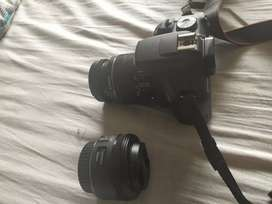canon 1500d with 2 lense (7 month old)bill box available