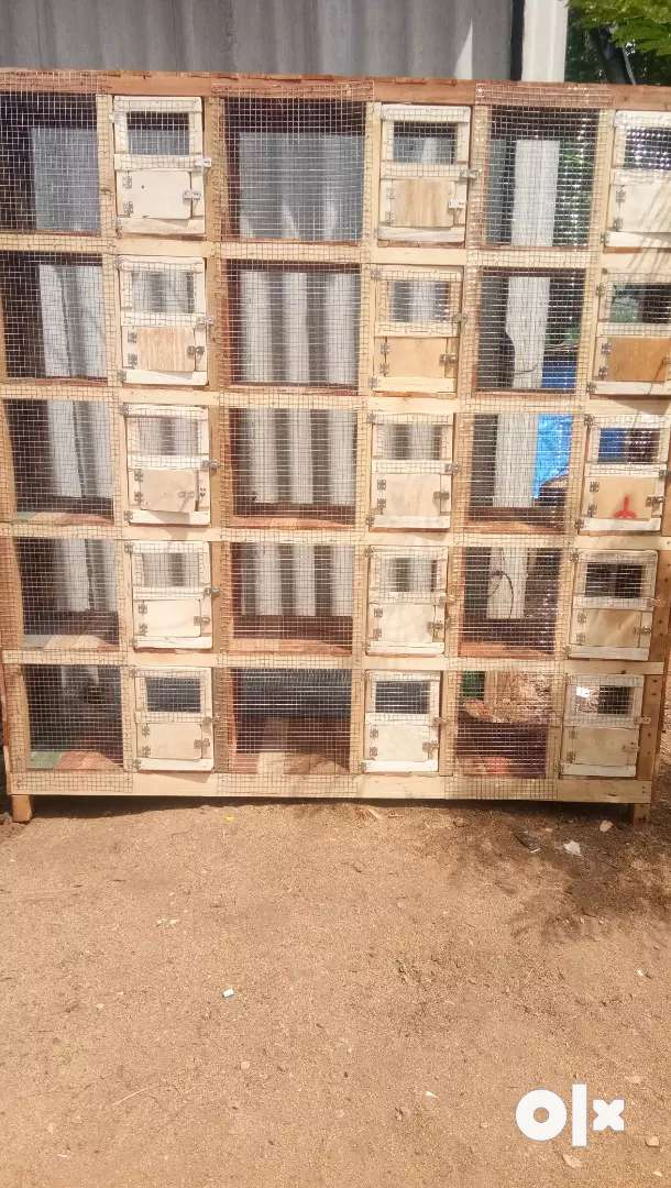 Birds Wooden cages and breeding boxes for sale 0