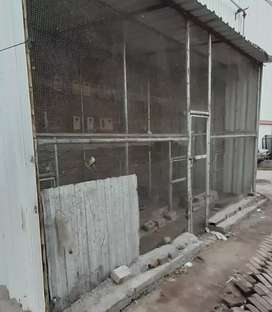 Plot on rent for Chicken farming